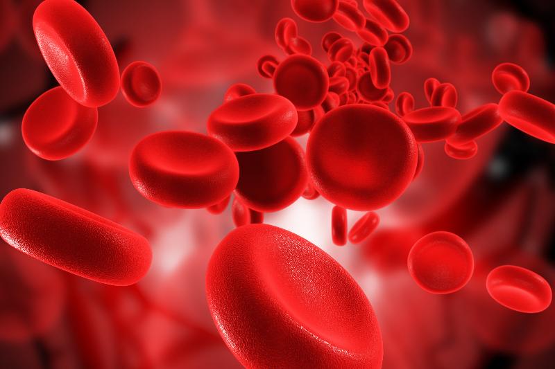 kan ile ilgili görsel sonucu